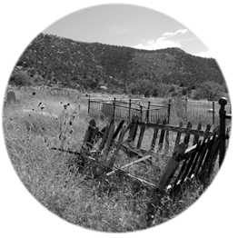 Dawson Cemetery-3-500