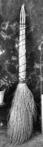 ancient broom (thnkstock)
