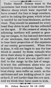 Sheep grazing 08-18-1892